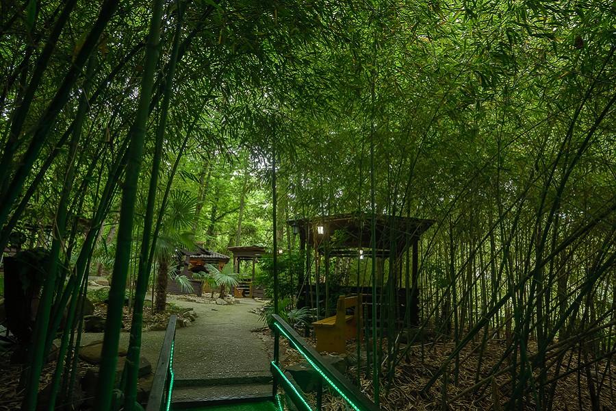 Кафе на территории санатория Актер, Сочи