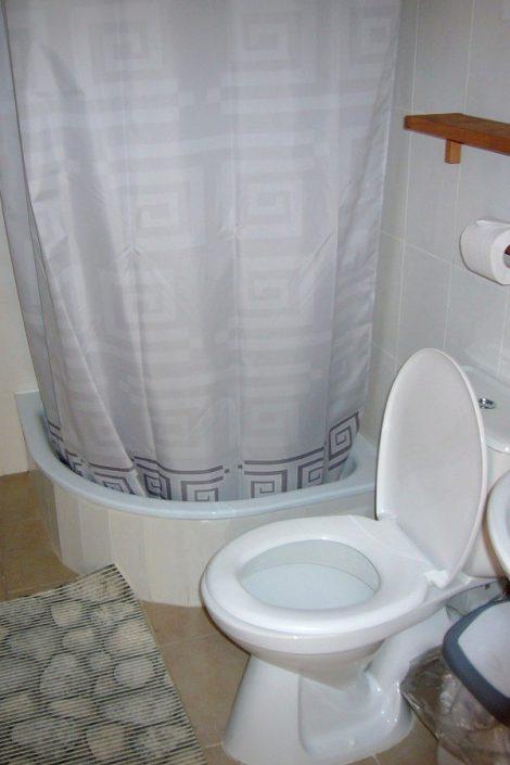 Туалетная комната номера Стандарт Плюс отеля Альпийский двор