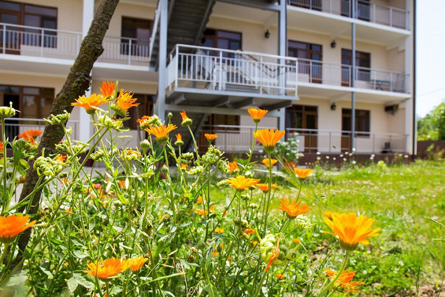 Территория гостевого дома Amina Beach
