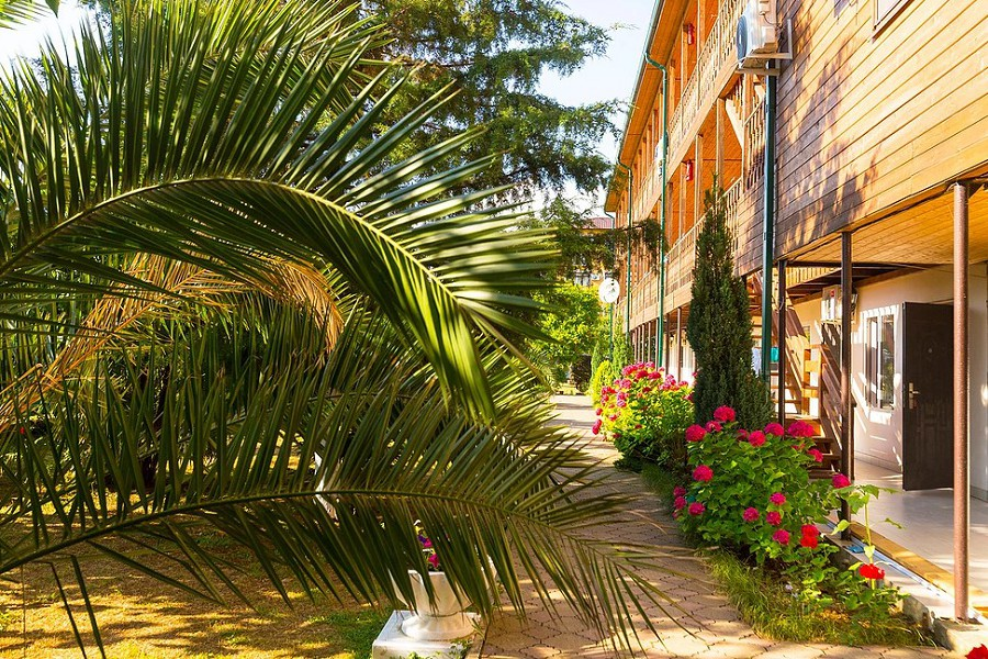 Гостиница Арго, Абхазия, Гудаута, пос. Бамбора