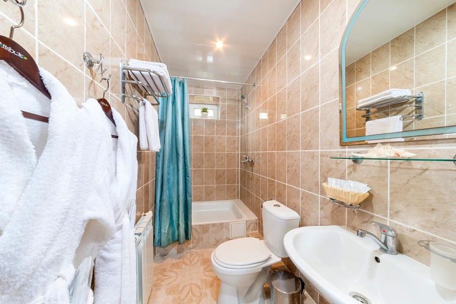 Туалетная комната Стандартного номера гостинцы Астория