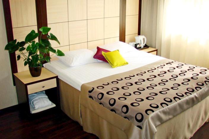 Стандарт двухместный отеля Багатель