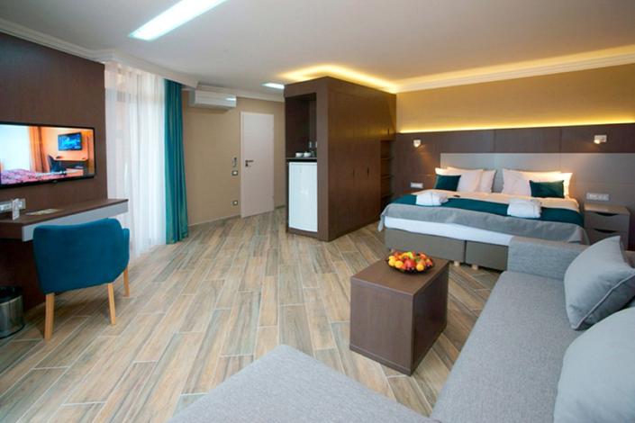 Делюкс Плюс двухместный отеля Багатель