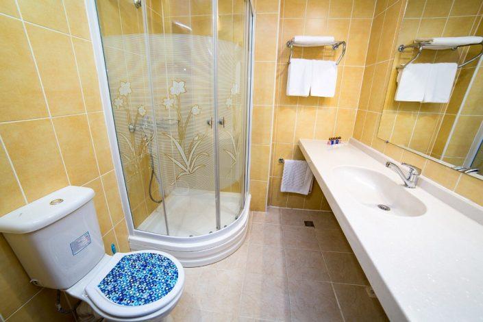 Туалетная комната Стандартного номера отеля Царская аллея, Новый Афон, Абхазия