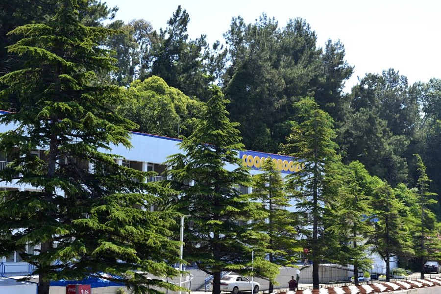 Вид на пансионат Кукуруза с причала №265