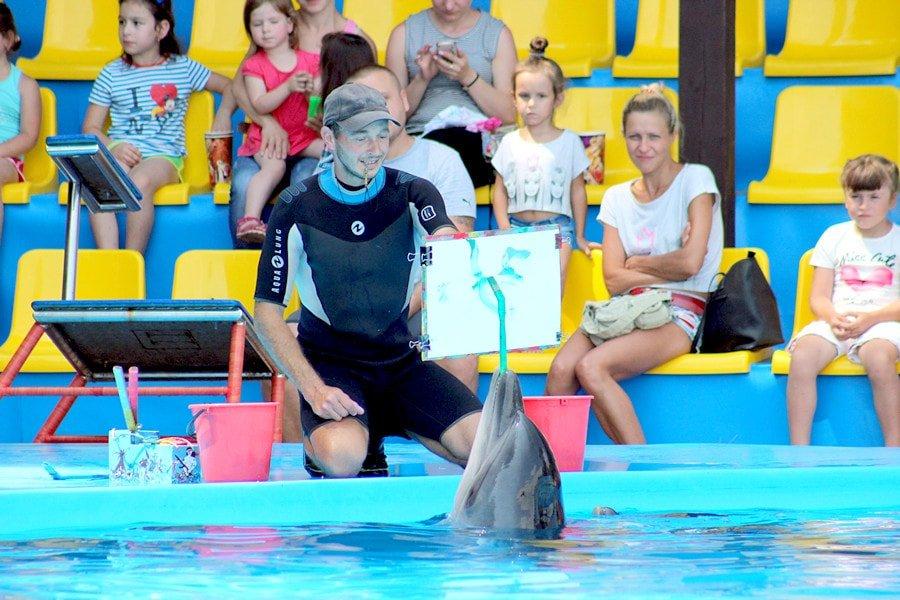 Дельфинарий в Пицунде, Абхазия