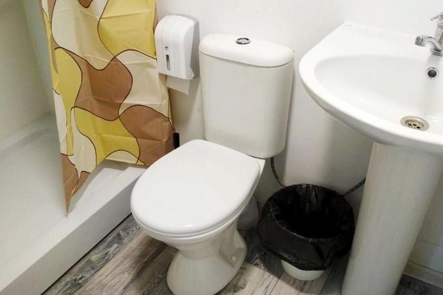 Туалетная комната номера Стандарт в Норвежском домике пансионата Dublin & Dolphin