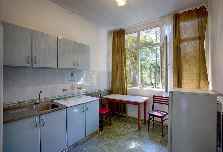 Кухня номера Люкс пансионата Эвкалиптовая роща, Кындыг, Абхазия