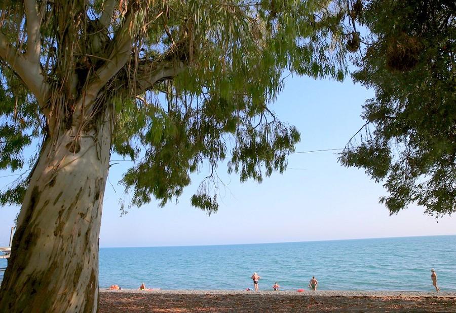 Пляж пансионата Эвкалиптовая роща, Абхазия, Кындыг