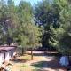 Мини-отель Forest Club, Абхазия, Пицунда, пос. Цитрусовый совхоз