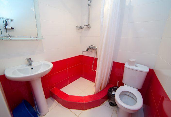 Туалетная комната двухместного номера в коттедже пансионата Гагра