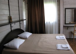 Номер гостиницы Грифон