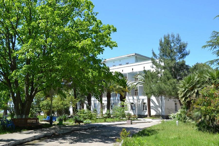 Территория пансионата Кавказ, Гагра, Абхазия