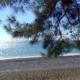 Пляж в Пицунде, Абхазия