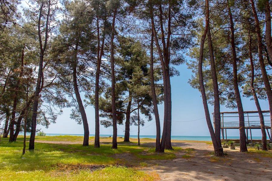 Берег моря у пансионата Лагуна