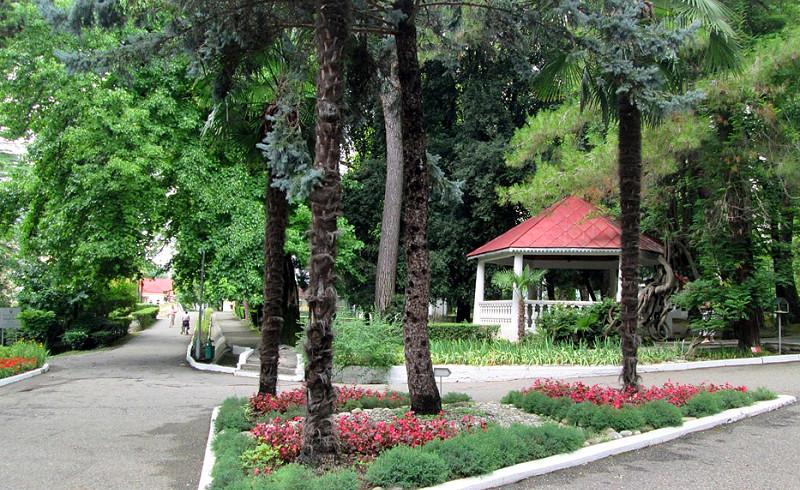 Дендропарк санатория Лазурный берег, Сочи