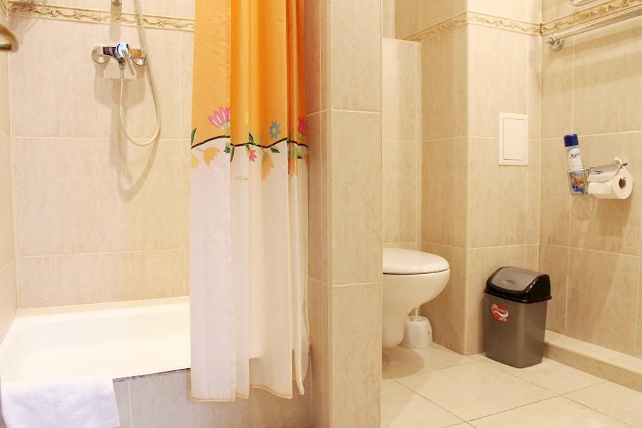Туалетная комната Стандартного номера отеля Мелодия гор