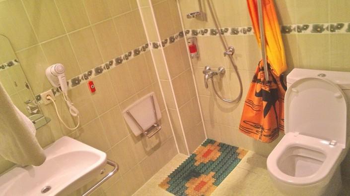 Туалетная комната в Стандартном двухместном номере отеля Мирит