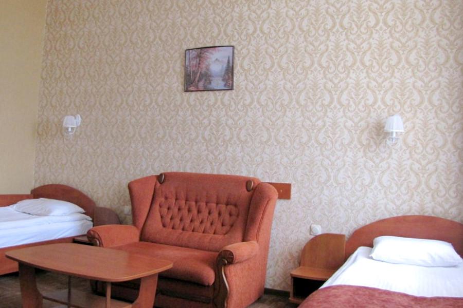 Стандарт двухместный гостиницы Палас