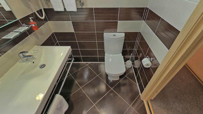 Туалетная комната Стандартного номера в Главном корпусе