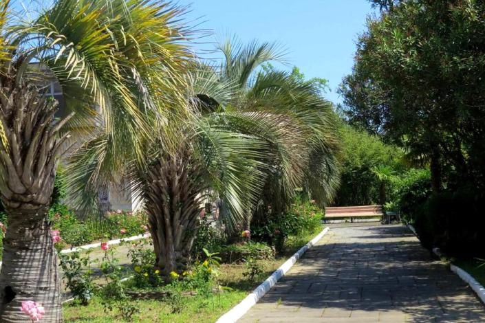 Территория дома отдыха Питиус, Пицунда, Абхазия