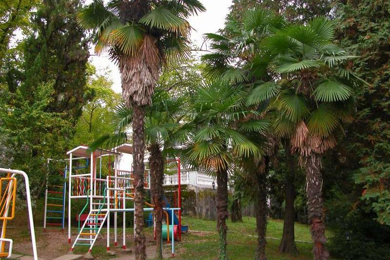 Детская игровая площадка в санатории Радуга