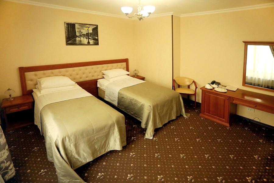 Стандарт Эконом двухместный с раздельными кроватями отеля Ritsk