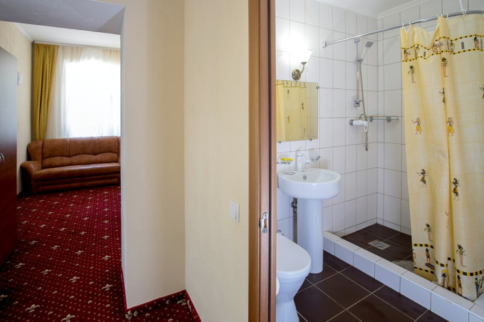 Туалетная комната номера Люкс в парк-отеле Романова