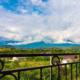 Вид с балкона Стандартного номера отеля Сария