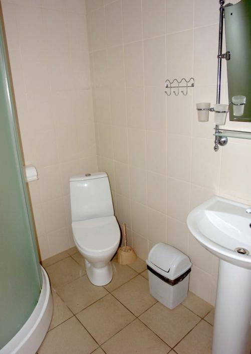 Туалетная комната номера Стандарт в отеле SeaLand