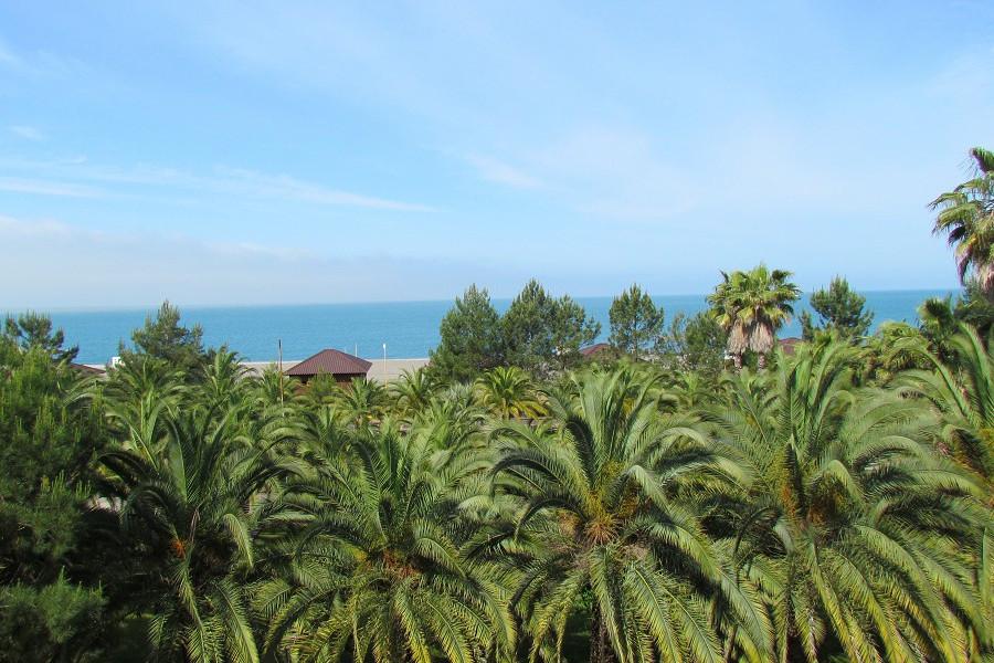 Вид на море и пляж из пансионата Сосновая роща