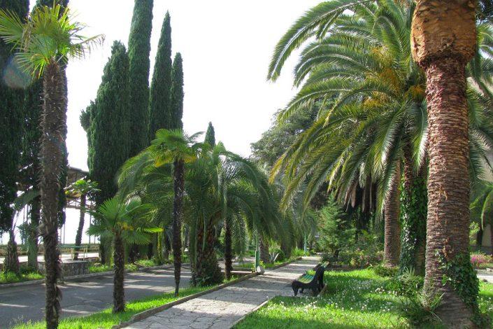 Приморский парк города Гагра, Абхазия