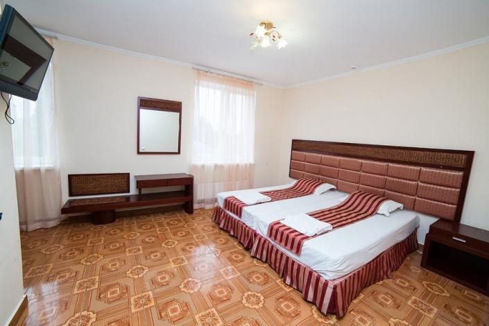 Стандартный двухместный номер без балкона отеля Светлый путь Апсны