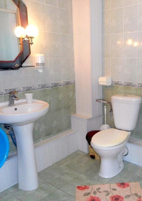 Туалетная комната номера Стандарт двухместный в пансионате Трехгорка