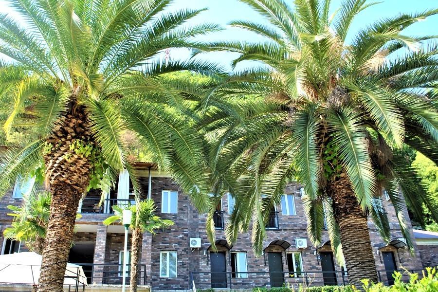 Парк отель У монастыря, Новый Афон, Абхазия