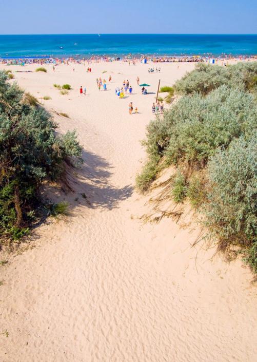 Дорога к пляжу пансионата Веста