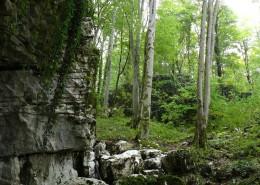 У входа в Воронцовскую пещеру