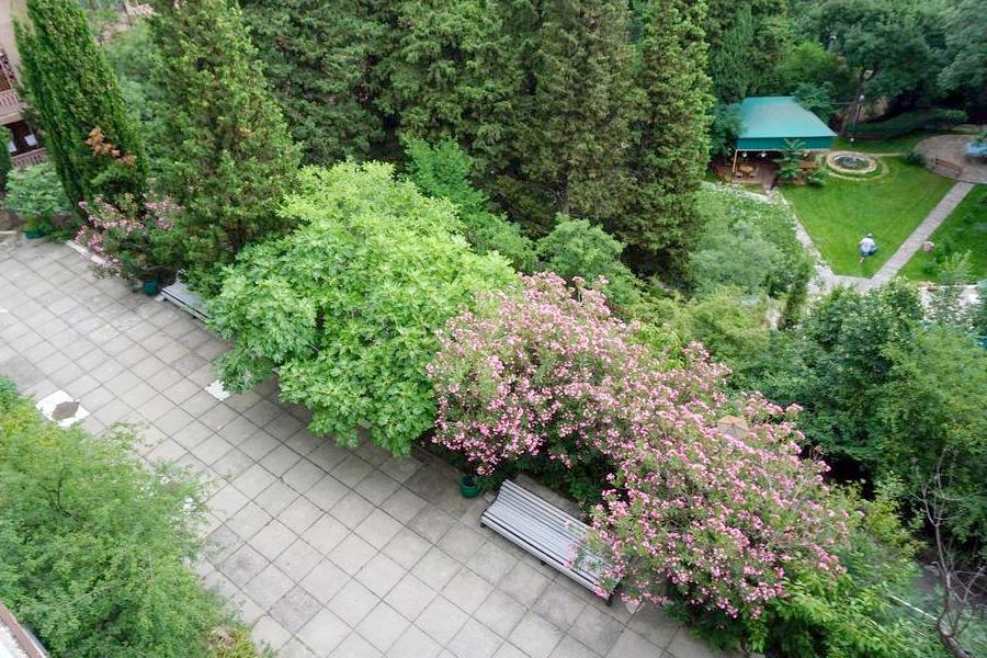 Вид на территорию из номера в Ялтинском городском пансионате