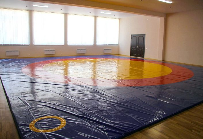 Зал с борцовским ковром в спорткомплексе Жемчужина