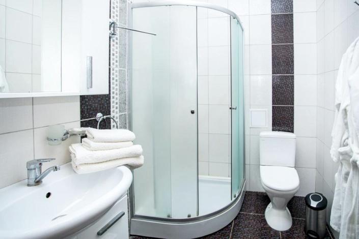 Туалетная комната номера Люкс в гостевом доме Золотое руно