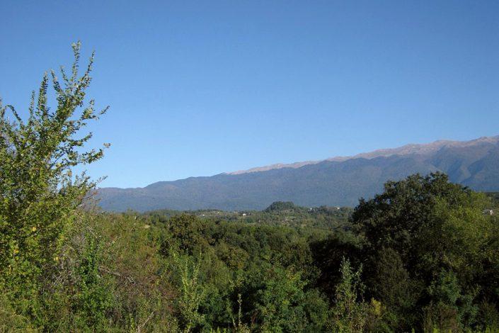 Вид на горы с территории базы отдыха Золотой берег Терло, Гудаута